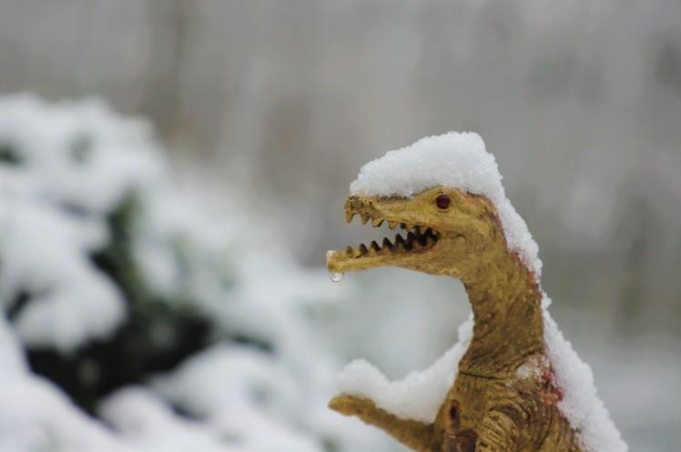 fierce dinosaur in the snow